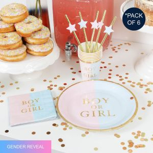 Gender Reveal Party Pack with 24 items