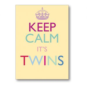 Keep Calm It's Twins Greeting Card